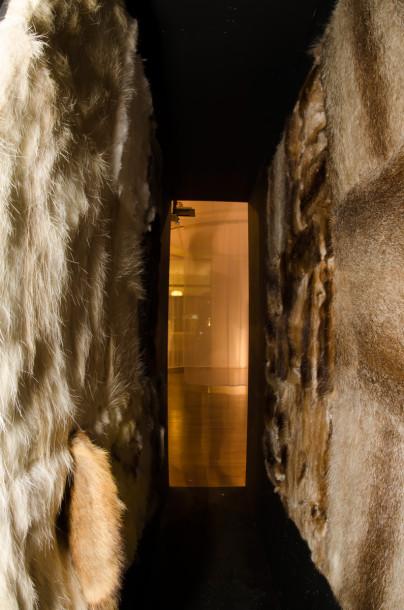 widok ekspozycji, fot. Tytus Szabelski